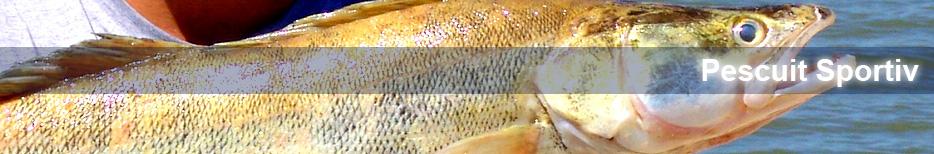 Pescuit Sportiv Lacul Bugeac