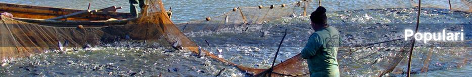 Populari cu Peste Lacul Bugeac